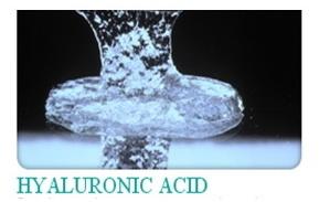 Sodium Hyaluronate (โซเดียมไฮยาลูโรเนต)
